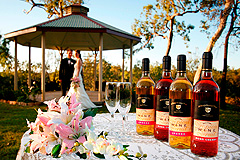 Wedding at the Gazebo with wine